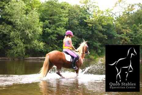 Quob Stables - One Hour Horse Riding Plus Afternoon Tea - Save 55%