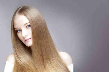 The Hair Boutique - Wash, cut and blow dry plus a silk hair conditioning treatment - Save 73%