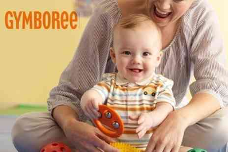 Gymboree Lanarkshire - One Month Membership to the Award-Winning Gymboree - Save 78%