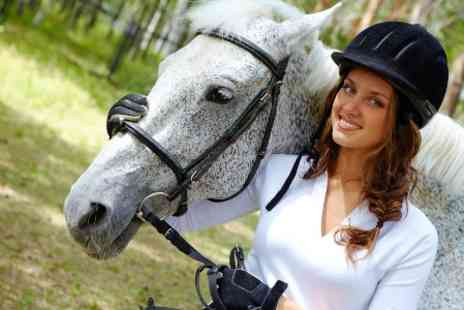 LillyWhites - Half Day Equestrian Experience Plus Lunch and Riding Lesson - Save 69%