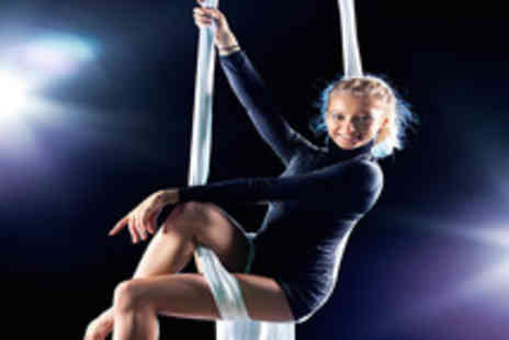 Emmas Pole Dancing - 8 pole dancing or aerial art dance classes - Save 68%