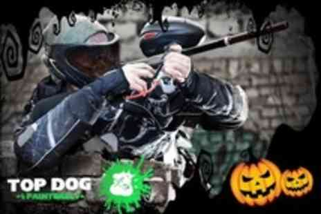 Top Dog Paintball - Top Dog Paintball with Halloween Trick or Treat Paintballing For One With 500 Balls - Save 42%