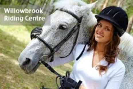 Willowbrook Riding Centre - Horse Riding Lesson or Hack For One - Save 52%