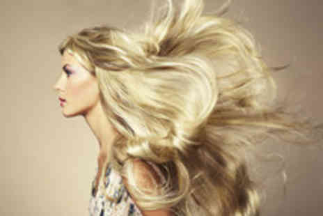 DS Hair - Full head of colour or half head of highlights, cut and blow dry - Save 53%
