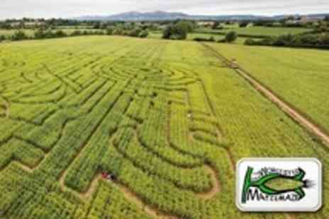 Maize Maze - Admission to Halloween For Four to Afternoon - Save 33%