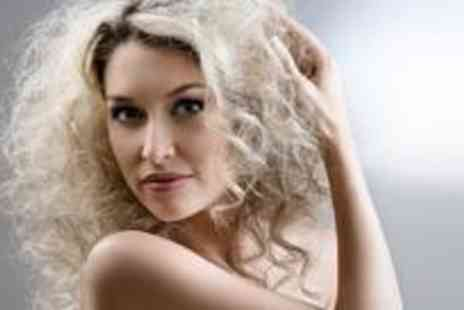 Passion Hair - Half head or T section of highlights plus a restyle cut and blow dry - Save 82%