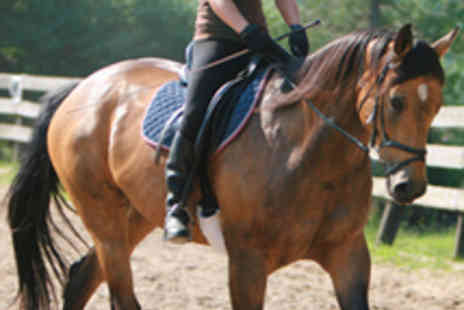 Glen Jakes Riding School - Group Horse Riding Lesson with Rosette - Save 51%