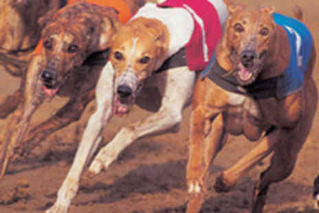 Doncaster Greyhound Stadium - Dog Racing for Four with Hot Dog, Chips and Beer - Save 68%
