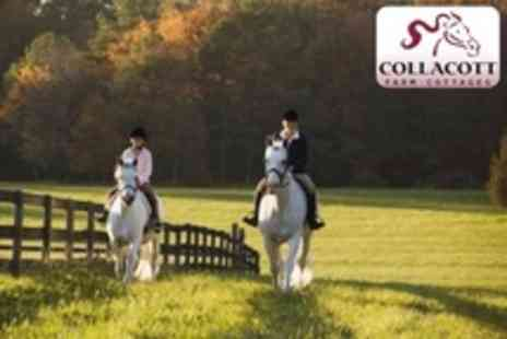 Collacott Riding School - Two Hours Horse Riding Lessons or Hacks For One - Save 60%