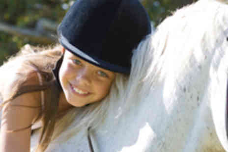 Pony Pursuits - One Hour Pony Ride - Save 54%
