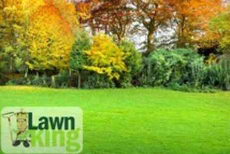 Lawn King - Winter Lawn Treatment For Up to 100sqm - Save 50%