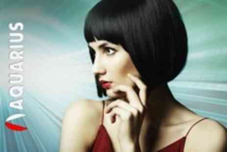 Aquarius Hair Salons - Half Head Highlights or Full Head Colour With Cut and Finish - Save 66%