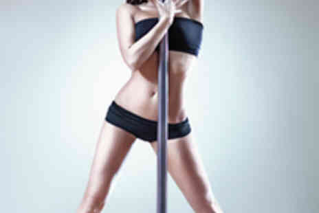 Pink Kitten Dance School - Four Week Beginners Pole Dance or Burlesque Course - Save 50%