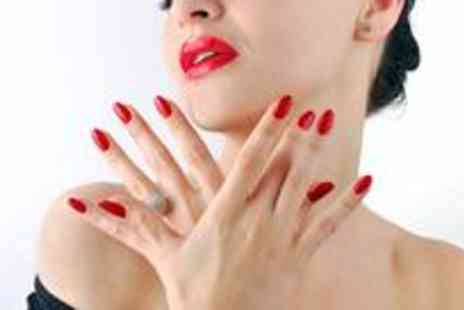 Absolute Nails and Beauty - Shellac fingers and toes with a mini manicure - Save 60%