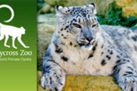 Twycross Zoo - Entry to The World Primate Centre - Save 52%