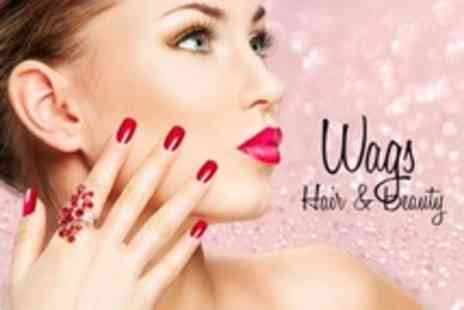 Wags Hair - Shellac Manicure or Pedicure - Save 67%