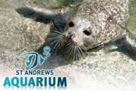 St Andrews Aquarium - Unlimited Winter Family Pass For Two Adults and Three Children - Save 62%