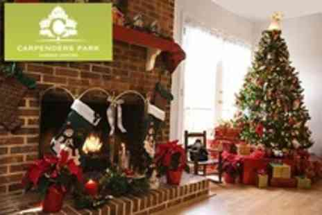Carpenders Park Garden Centre - Christmas Trees - Save 50%