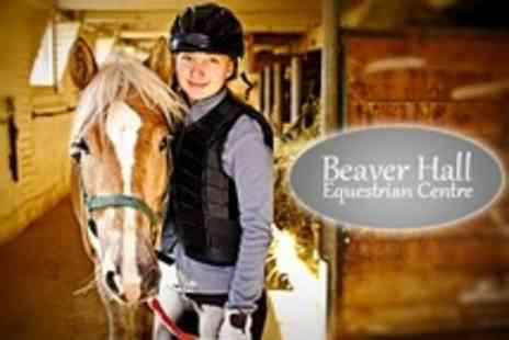 Beaver Hall Equestrian Centre - Shetland Pony Experience For One Children - Save 60%