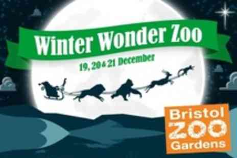 Bristol Zoo Gardens - Tickets For Christmas Special With Santas Grotto and Christmas Market - Save 53%