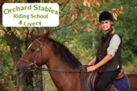 Orchard Stables - Horse Riding Lesson - Save 37%