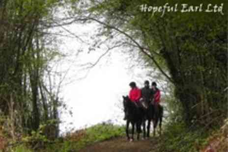 Hopeful Earl - Horse Riding 2.5 Hour Countryside Hack - Save 56%