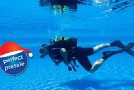 Dive Bunker - Two hour diving experience covering module one of the PADI course - Save 53%