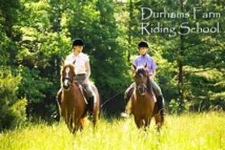 Durhams Farm Riding School - Two Horse Riding Lessons - Save 55%