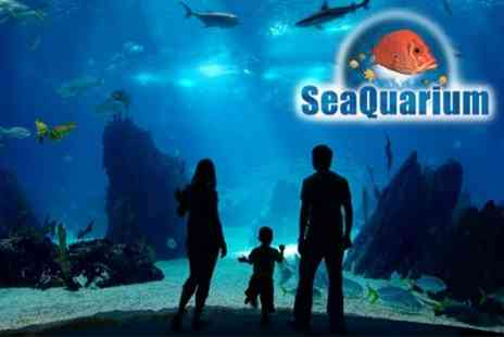 Seaquarium - Family Day Ticket For Two Adults and Two Children - Save 60%