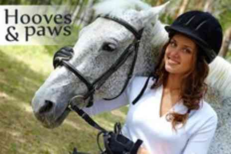 Hooves and Paws - 90 Minutes of Horse Riding Tuition - Save 55%