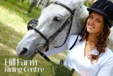 Hill Farm Riding Centre - One Private  Horse Riding  Lessons- Save 52%