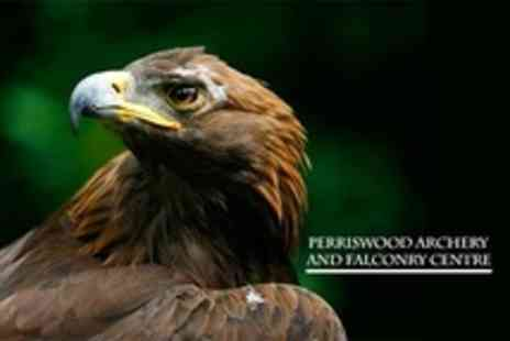 Perriswood Archery and Falconry Centre - Half Day Experience  - Save 50%