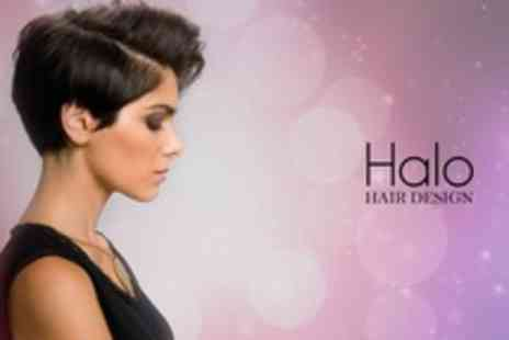 Halo Hair Design - Cut and Finish With Conditioning Treatment and Head Massage - Save 30%
