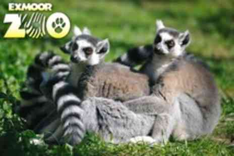 Exmoor Zoo - Family of Four Entry - Save 51%