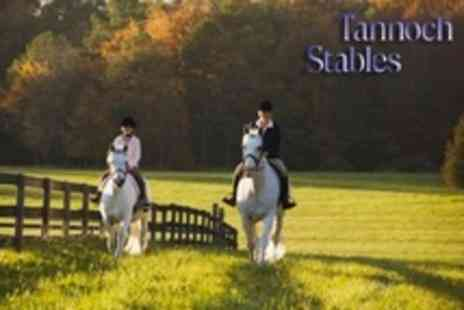 Tannoch Stables - Horse Riding Two Group Lessons - Save 60%