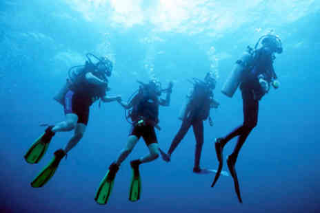 Dive Style - Scuba diving lesson for a family of four - Save 72%