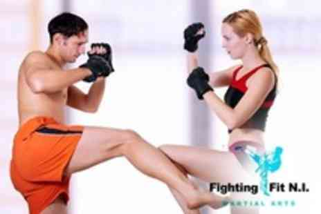 Fighting Fit Martial Arts - K30x Martial Arts Interval Training Course - Save 80%