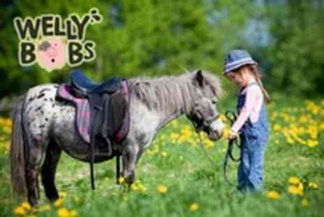 Wellybobs Farm Park - Pony Experince Plus Park Entry For One Child - Save 29%