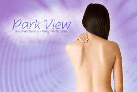 Park View - Initial Chiropractic Consultation and Two Treatment Sessions - Save 73%