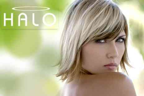 Halo Salon - Cut and Finish With MOROCCANOIL Treatment - Save 60%
