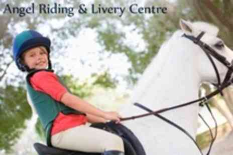 Angel Livery and Pony Club - Horse Riding One, Three or Five Lessons - Save 75%