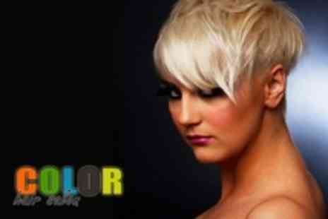 Color Hair Salon - Hot Oil Conditioning Treatment, Cut and Blow Dry - Save 51%