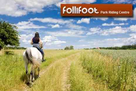 Follifoot Park Riding Centre - Horse Riding Lesson For Intermediate Lesson Plus Stable Management Class - Save 63%