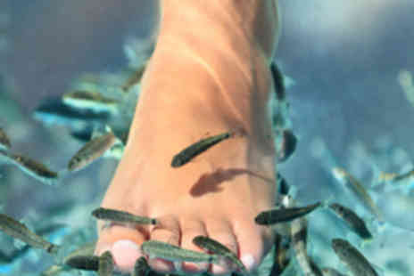 Reginas Beauty - Fish Pedicure with Mini Foot Massage - Save 50%