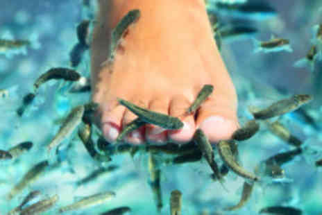 Zigafish - Fish pedicure - Save 70%