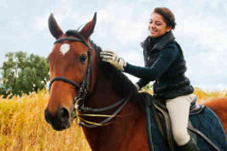 Glen Jakes Riding School - 30 Min Private Riding Lesson - Save 51%