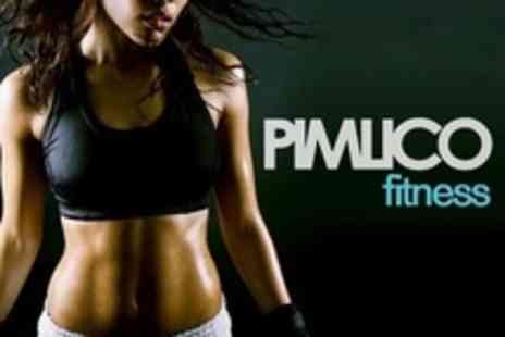 Pimlico Fitness - Ten Fitness Classes in Choice of Exercise - Save 86%