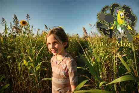 Copley Corn Maze - Entry For Four  With All Activities and Drink Each - Save 62%