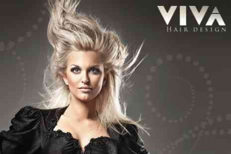 Viva Hair Salon - Cut and Blow Dry With Conditioning Treatment Plus Restyle - Save 55%
