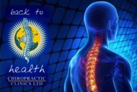 Back to Health Chiropractic - Postural Consultation With Back Scan, X Rays, Two Treatments and Spinal Care Workshop - Save 84%